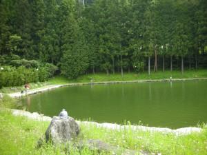 ハンドメイドミノー『Jyami(ジャミ)』の使用例イメージ5